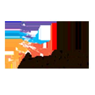lorikeet
